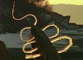 Andy Goldsworthy – Naturalist Artist-icicles from Rivers & Tides. 4 videos on website.