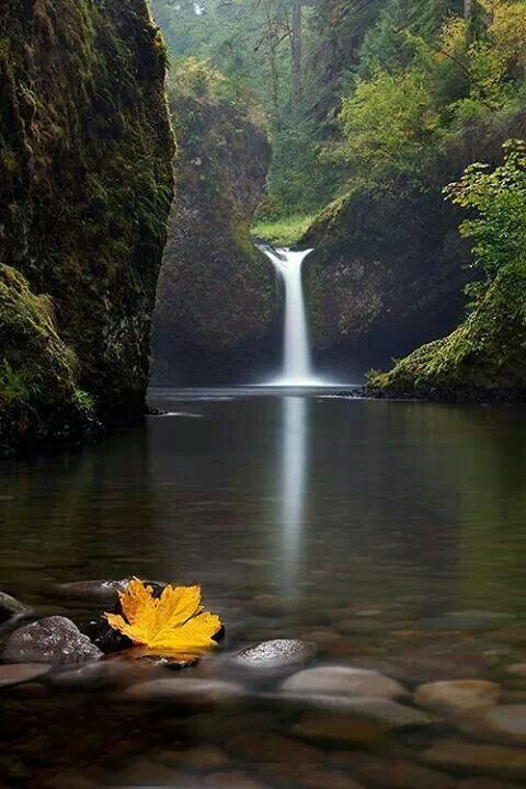 Creek Oregon