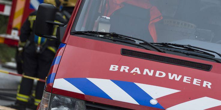 """De brandweermannen- en vrouwen uit het Limburgse Horst zijn op zoek naar nieuwe collega's en dat doen ze op een ludieke manier. De heren en dames zijn al dansend en playbackend op het nummer Amigo van Chef'Special te zien in een video, dit om de activiteiten van hun brandweerkazerne te promoten. """"Tien nieuwe brandweerlieden zijn…"""