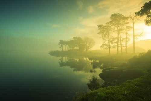 Knapps Dawn   Knapps Loch, Scotland, GB  © PeterYoung1.... Beautiful soft lighting.