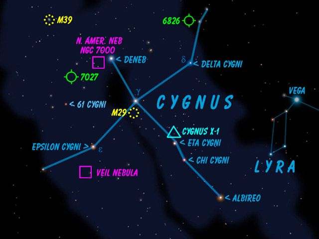 Best 25+ Cygnus constellation ideas on Pinterest | New ...