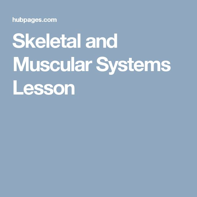 Skeletal and Muscular Systems Lesson