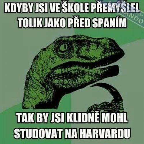 Myšlenky | Loupak.cz