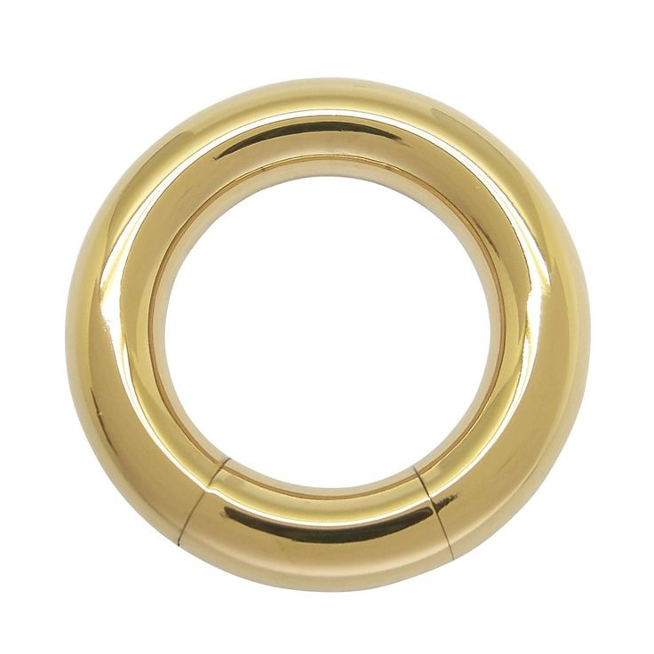 6mm x 19mm PVD Gold color Surgical Steel Segment Ring Body Piercings