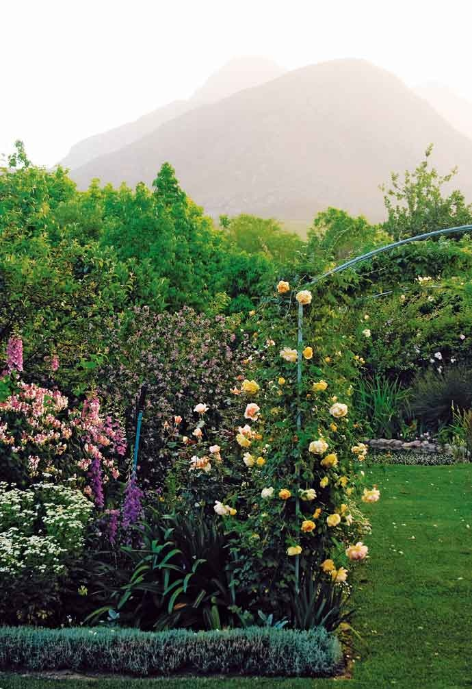This cottage-style garden in Greyton features three Monet arches that lead to a pond and beautiful rose beds.
