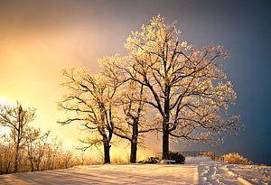 La fotografía del paisaje del invierno - Luminoso - Blue Ridge Puesta de sol de invierno por Dave Allen