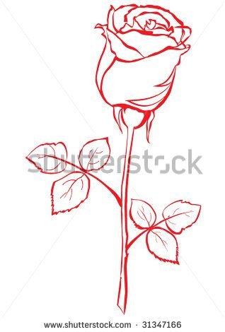 Image detail for -Rose Bud Stock Vector 31347166 : Shutterstock