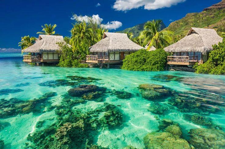 Острова Кука. Южная часть Тихого океана. Полинезия