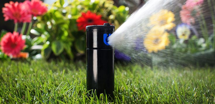 Does Your Irrigation System Need Winterizing?