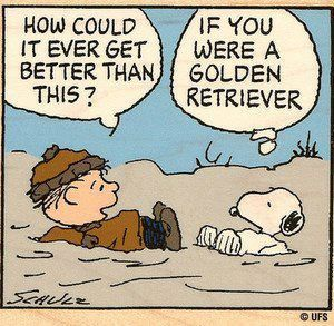 Linus and Snoopy...... if you were a golden retriever:
