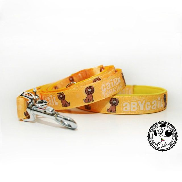 Set obojku a vodítka od Blackberry | Set of collar and leash by Blackberry #cairnterrier #cairn #abygail #set #collar #leash #yellow #goodsfordogs #blackberry #nice #goodjob #kvalitni #obojek #voditko #obojekavoditko #zluta #krasne #dobraprace #karnterier #karn #karnterrier #quality