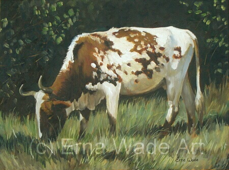 """Nguni 30  Oil on Stretched Canvas  400x300mm (16x12"""")  Price: $98  To buy, Contact me on my Facebook Page: ErnaWadeArt"""