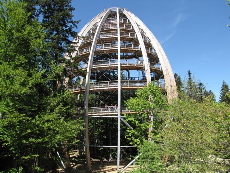 Treasures of the Bavarian forest: the longest tree top walk in the world