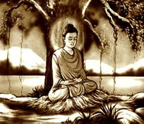 Résultats de recherche d'images pour «bouddha et arbre de la bodhi»