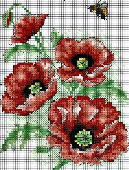 Gallery.ru / Фото #109 - цветы 4 - semynova
