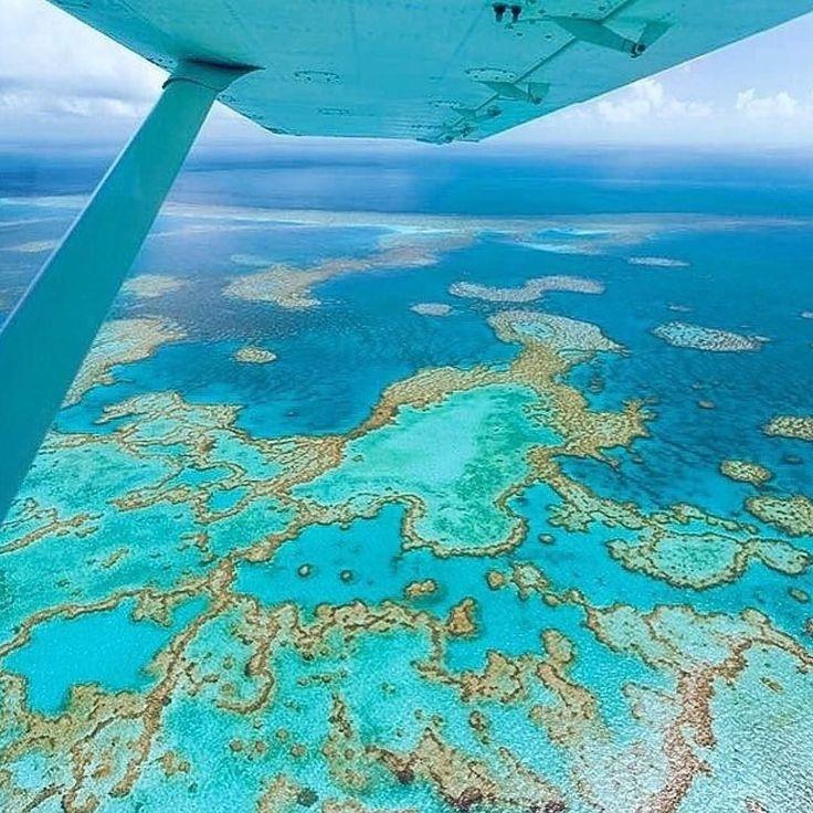 @topdestinospormarinamantega das paisagens naturais mais lindas do mundo a Great Barrier Reef possui uma beleza deslumbrante de corais e é considerado o maior recife de corais do mundo. O recife contém uma abundância de vida marinha centenas de ilhas tropicais e um visual que jamais irá sair da sua memória. Tem lugares que você não pode deixar de ir como; Whitehaven Beach Que é um trecho de 7 km ao longo Whitsunday Island; Twelve Apostles é outro lugar maravilhoso maravilhoso é pouco é…