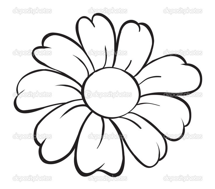 17 Best ideas about Easy Drawings Of Flowers on Pinterest | Flower ...