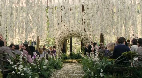 Twilight wedding... im a nerd but cant deny how awesome this is!