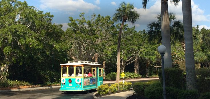 """We had a feeling you did! Well here she is folks, the Fabulous Island Trolley! The Sanibel Trolley Tour is an easy breezy ride around key historic and scenic points of interest on Sanibel Island. We cruise along the palm tree laden roads while your """"Island Trolley Guide"""" (or """"Trolley Dolly"""" for the ladies) narrates..."""