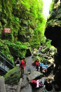 Ontario, near Collingwood. Caves, Suspension Bridge, Ziplining - Deep in caves