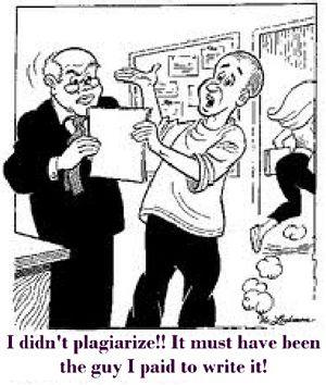 No plagiarized essay written
