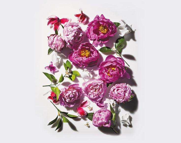 Una fragranza fresca, bianca, fiorita, luminosa ed eterea come la donna Shiseido! #sharebeauty
