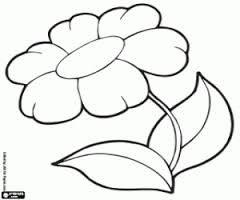 13 besten Blumen Ausmalbilder Bilder auf Pinterest  Blumen