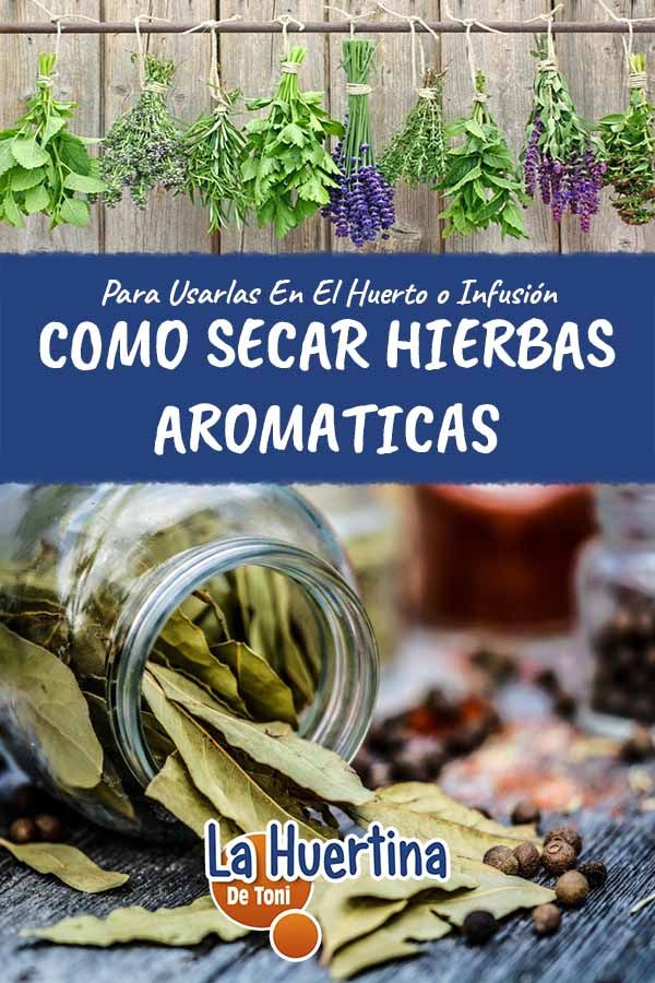 Como Secar Hierbas Aromáticas Y Medicinales Para Almacenar Secado De Hierbas Hierbas Plantas Aromaticas Y Medicinales