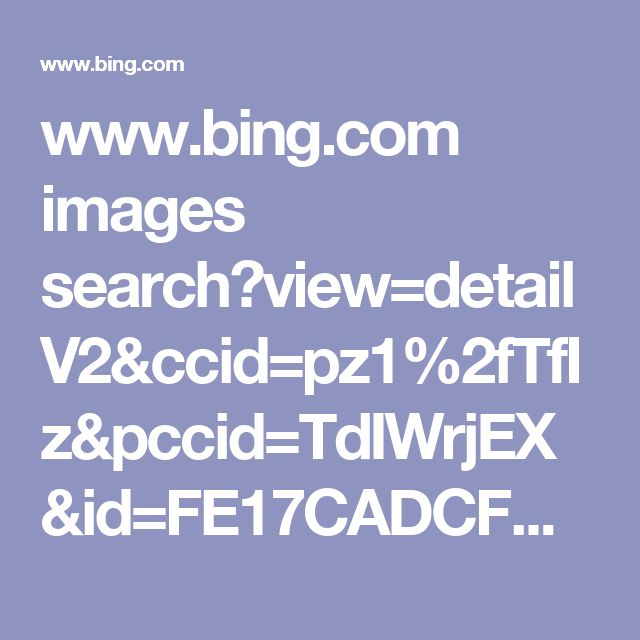 www.bing.com images search?view=detailV2&ccid=pz1%2fTfIz&pccid=TdIWrjEX&id=FE17CADCFC260C146FC91EA13E77D34A7D19B211&pmid=E57125CA81AEEAEFD8CDE529A1A8D7E5BEEFB5C2&q=hedgehogs&qpvt=African+Pygmy+Hedgehogs+as+Pets&psimid=608042760401259718&iss=VSI&selectedIndex=1&count=35