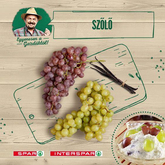 A szőlőtőke sok törődést igényel, de meghozza a gyümölcsét ;) Egy egyszerű, de nagyszerű recept: http://www.spar.hu/hu_HU/spar_chef/receptek/desszert/szolos_turohab.html