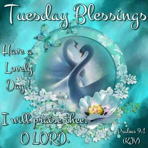 To My Dear Sister And Family Wish You A Lovely Tuesday