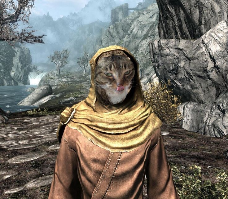 Prettiest Places Skyrim: 14 Best Khajiit Costume Inspiration Images On Pinterest