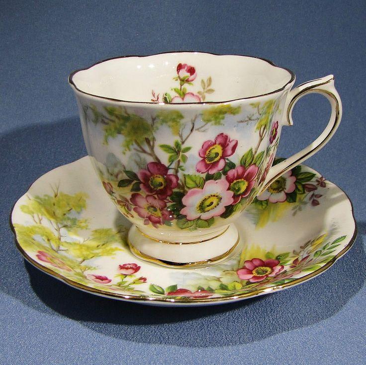 ROYAL ALBERT Wild ROSE Tea Cup and Saucer Pink Roses Teacup ENGLAND #RoyalAlbert