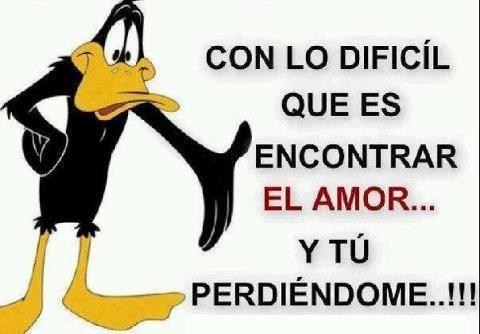 How hard it is to find your love and losing it...... Lo dificil que es encontrar amor y tu perdiendotelo