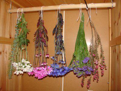 Glicerina para preservar las hojas y algun tipo de flores.