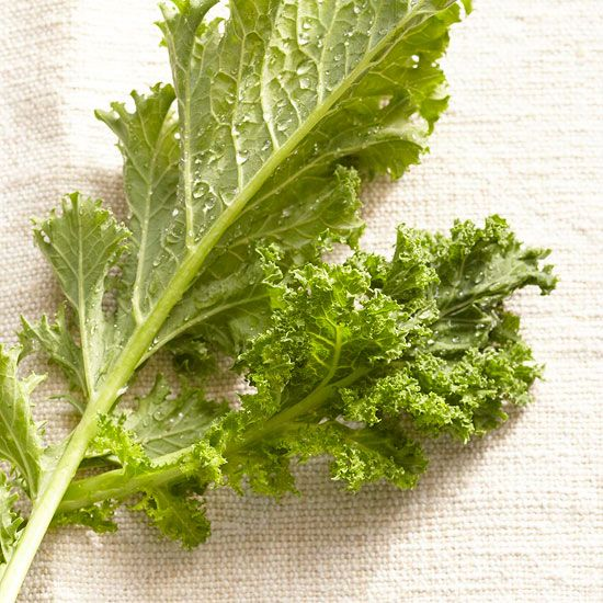 Kale is a health sensation that is rising in popularity. Find new recipes for this awesome leafy vegetable, and discover best practices for selecting, storing, preparing and cleaning kale. Try the three types of kale available in the U.S.: curly kale, ornamental kale and dinosaur kale. Discover how to boil, sauté and slow-simmer kale. Also (bonus!) find out how to make trendy kale chips.