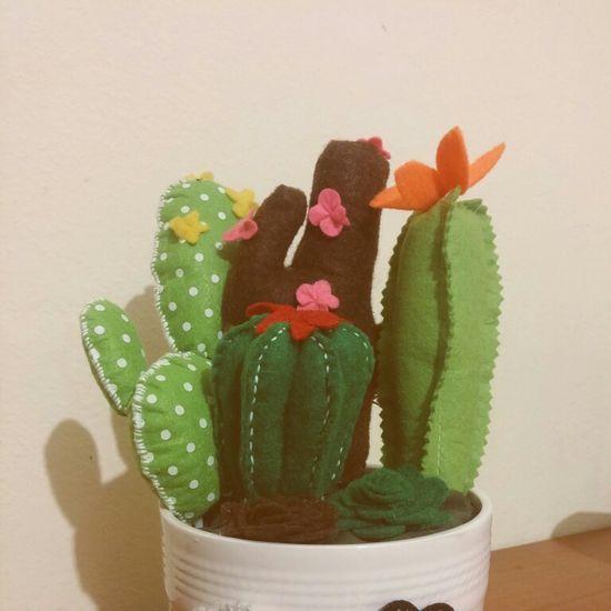 felt cactus gift