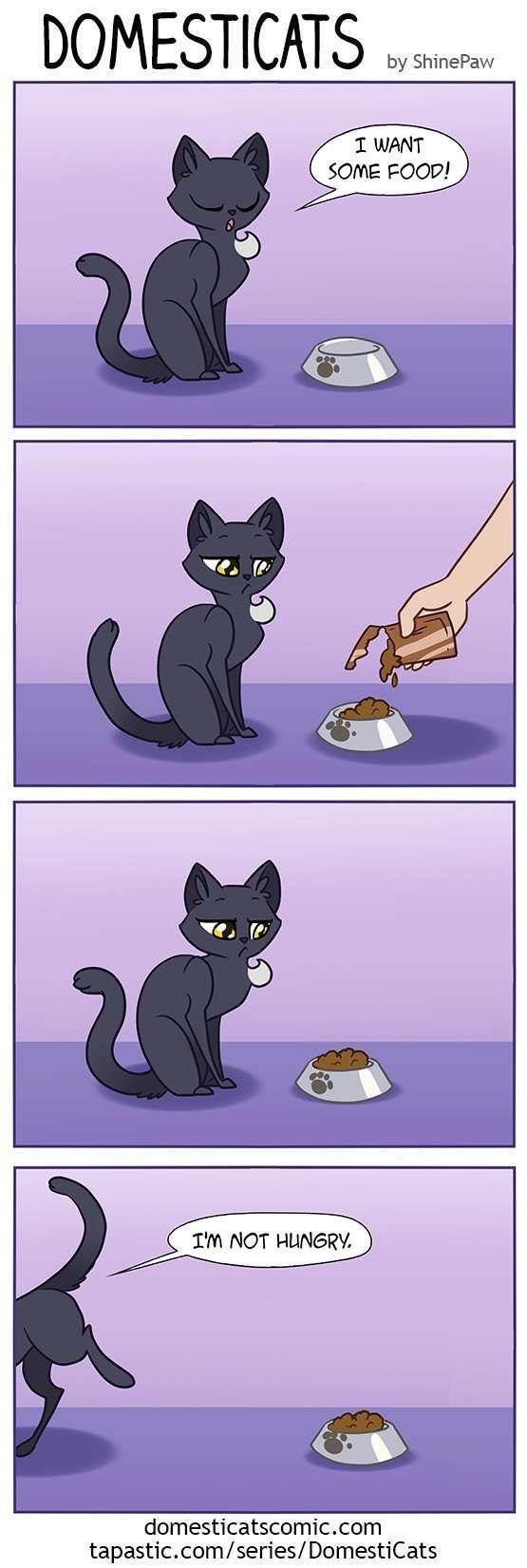 DomestiCats :: Some food | Tapastic Comics - image 1