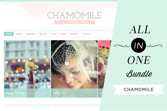 Check out All In One Bundle: Chamomile by hibluchic on Creative Market