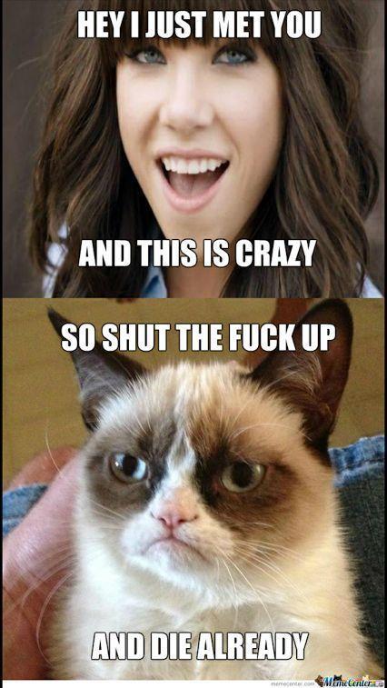 Hilarious And Sarcastic Grumpy Cat Memes