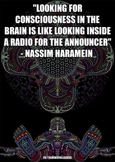 Looking for consciousness in the brain is like looking inside a radio for the announcer ༺♡༻ nassim haramein