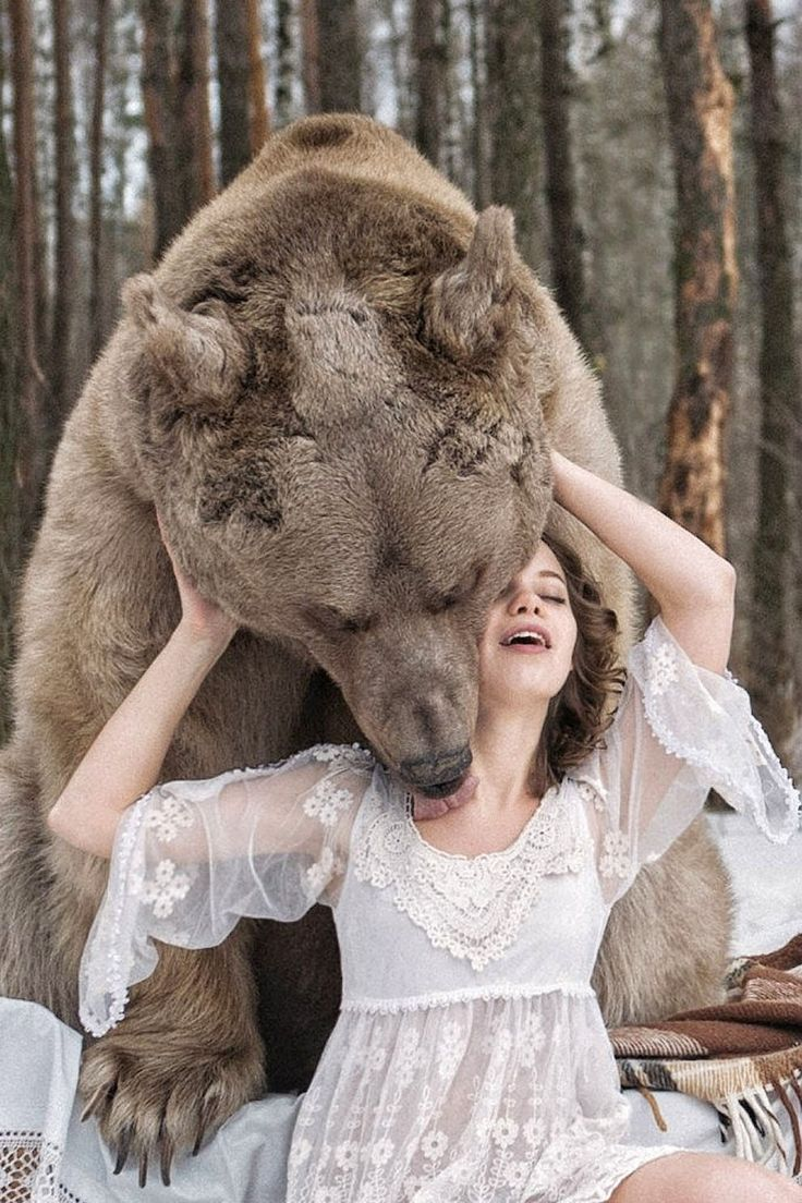 Медведь лижет девушку. http://Gudok62.ru