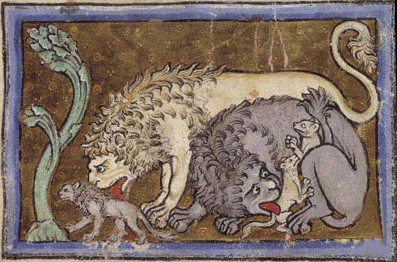 Medieval Bestiary : Lion