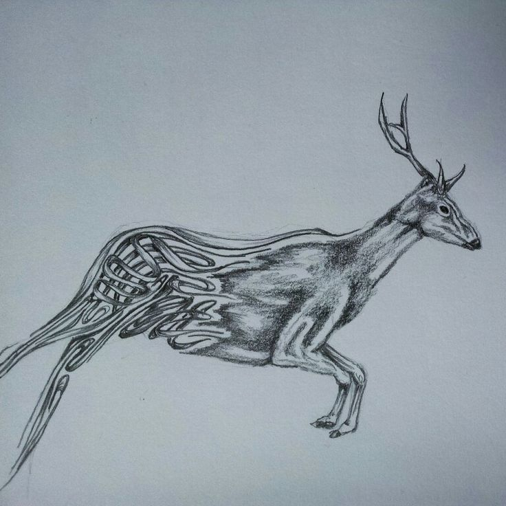 Deer pattern sketch. Art ideas