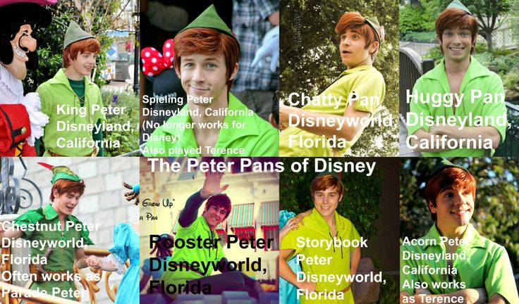 Peter Pan face character chart made by me.  I met Rooster Peter and saw Chestnut Peter in the Electrical Parade.  :)