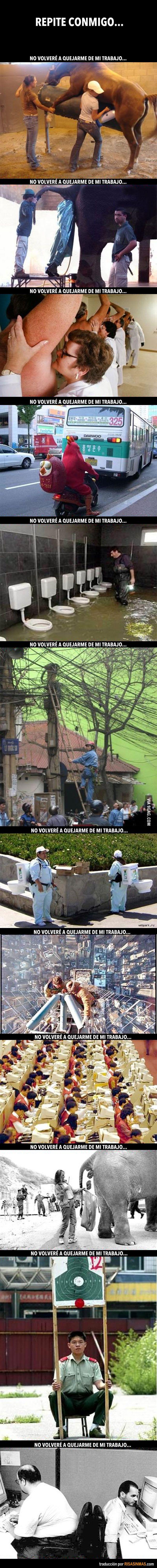 No me vuelvo a quejar de mi trabajo!!! http://www.gorditosenlucha.com/