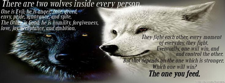 There Are Two Wolves Inside Every Person..