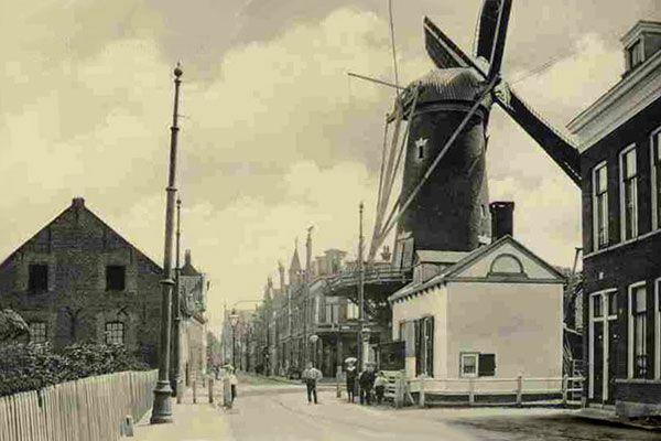Hieronder een foto van rond 1900 waar de molenstomp nog steeds een echte molen is: compleet en in bedrijf zodra er genoeg wind is om de machineriën aan te drijven. De pagina  Verdwenen molens vertelt meer over de Delfshavense molens. Het witte gebouw is het voormalige tolhuis.