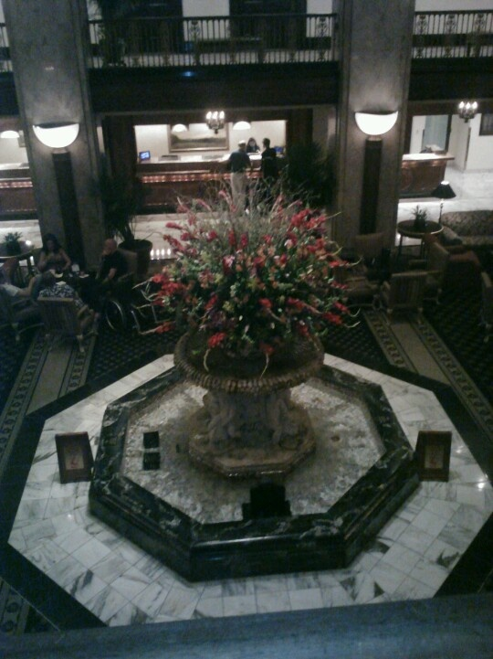 Peabody hotel Memphis TN...watched the ducks get in the fountain, they rode the elevator down from their roof top homes.