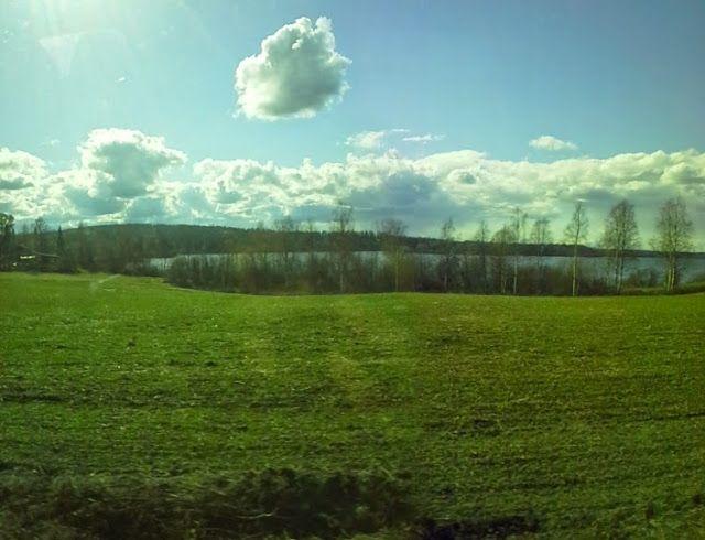 lyhyt matka luonto: Lähi luonto maisema